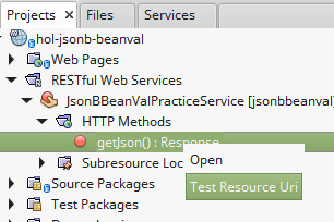 Bean Validation / JSON-B exercise | j1-hol